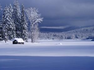 Winter2008_10