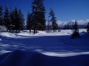 Winter2008_5