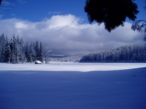Winter2008_7